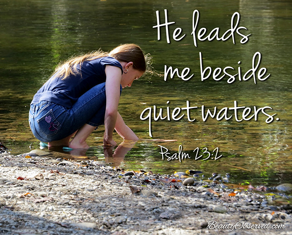 Visit BeautyObserved.com for more memes. He leads me beside quiet waters. Psalm 23:2