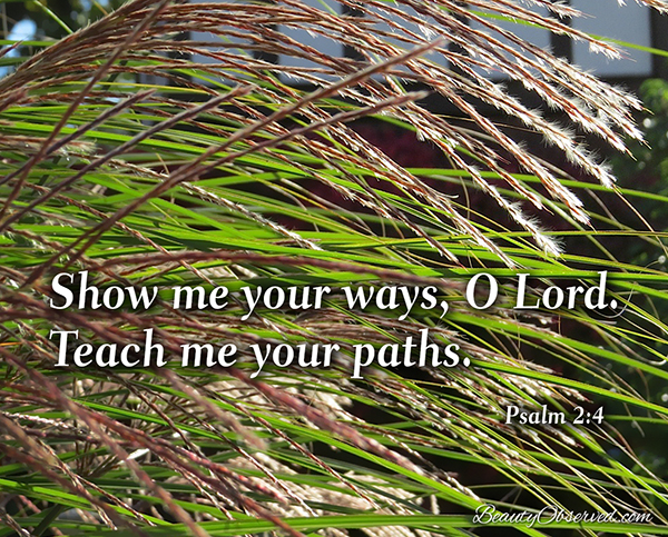 Visit BeautyObserved.com for more memes.  Show me your ways, O Lord.  Teach me your paths.  Psalm 2:4