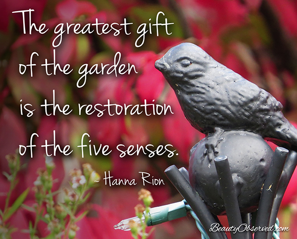 Visit BeautyObserved.com for more memes. The greatest gift of the garden is the restoration of the five senses. Hanna Rion