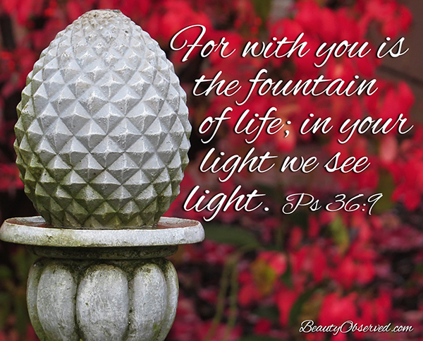 Visit BeautyObserved.com for more memes. For with you is the fountain of life...Psalm 36:9