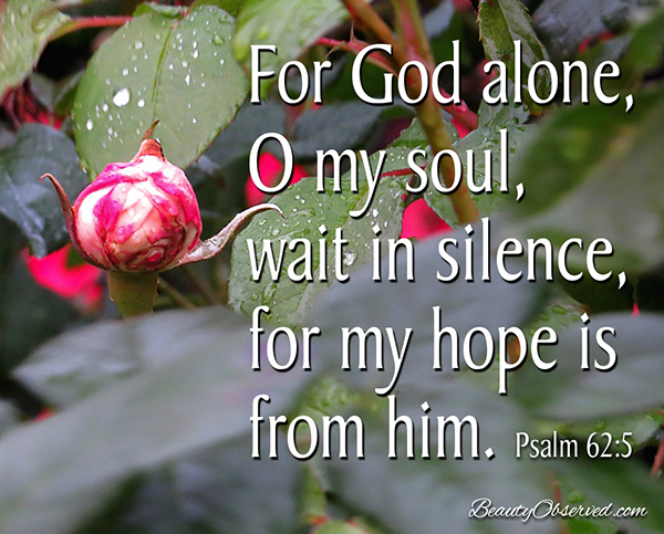 Visit BeautyObserved.com for more memes. For God alone, O my soul, wait in silence, for my hope is from Him. Psalm 62:5