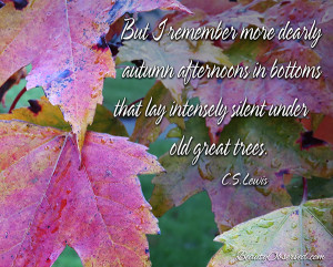 Visit BeautyObserved.com for more memes.  C.S. Lewis  But I remember more dearly autumn afternoons...