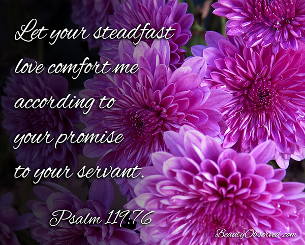 Visit www.beautyobserved.com for more inspirational memes and beautiful photography Psalm 119:76 #Psalm #mums
