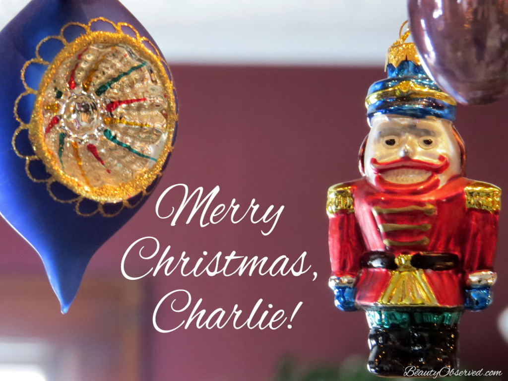 Merry Christmas, Charlie!  The Island of Misfit Toys  www.beautyobserved.com