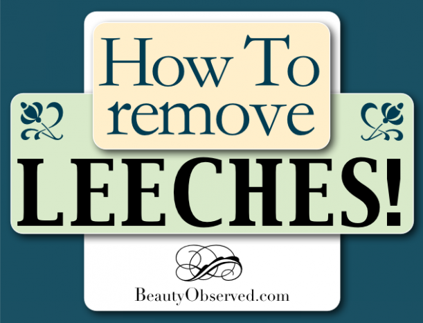 How to Remove Leeches  Interesting article on spiritual issues.