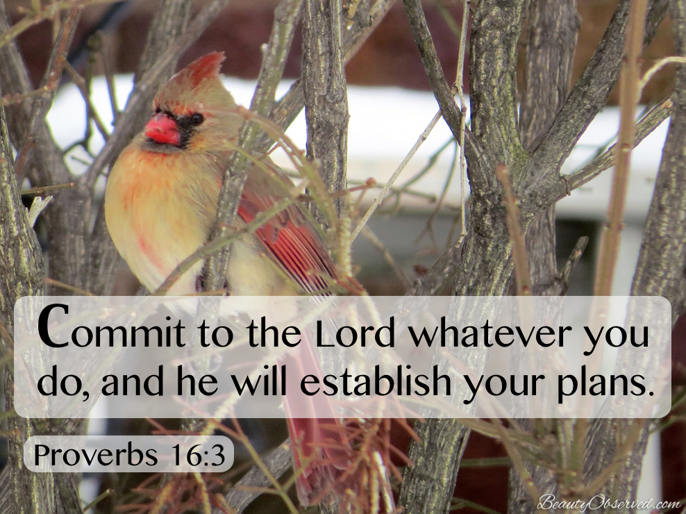 Commit to the Lord what you do.