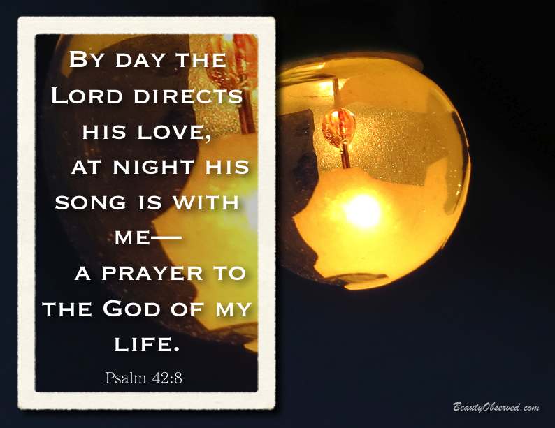 Psalm 42:8 By day the Lord directs His love, at night His song is with me-A prayer to the God of my life.