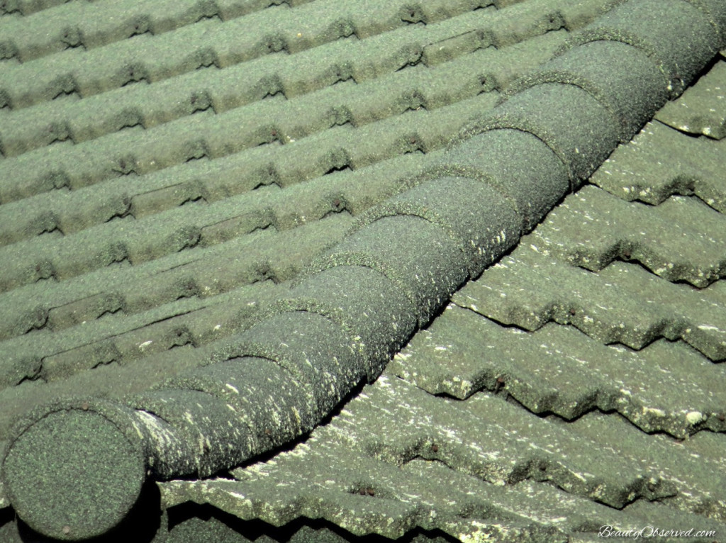 Green tile roof from Beauty Observed