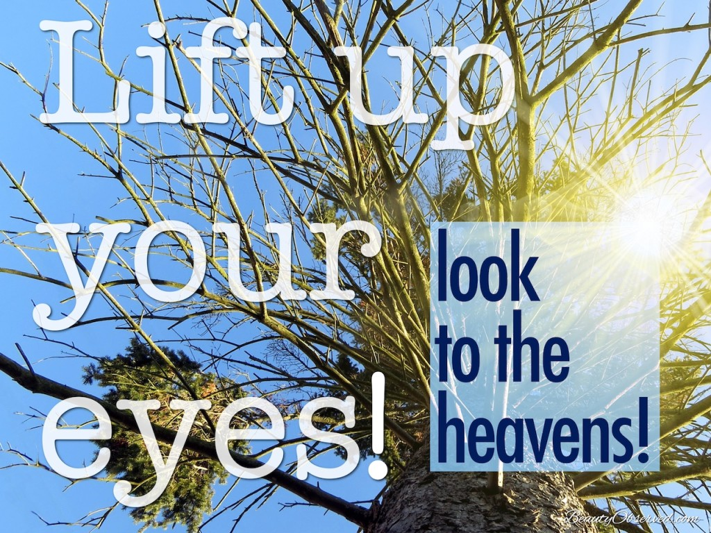 Lift up your eyes and look to the heavens.