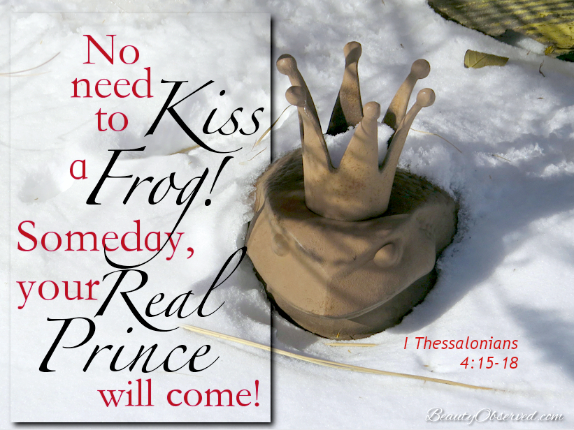 Don't kiss a frog! Someday your real Prince will come.