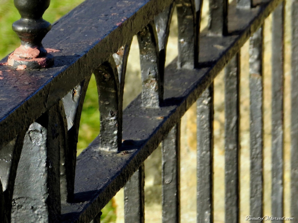 Black wrought iron fence  Beauty Observed