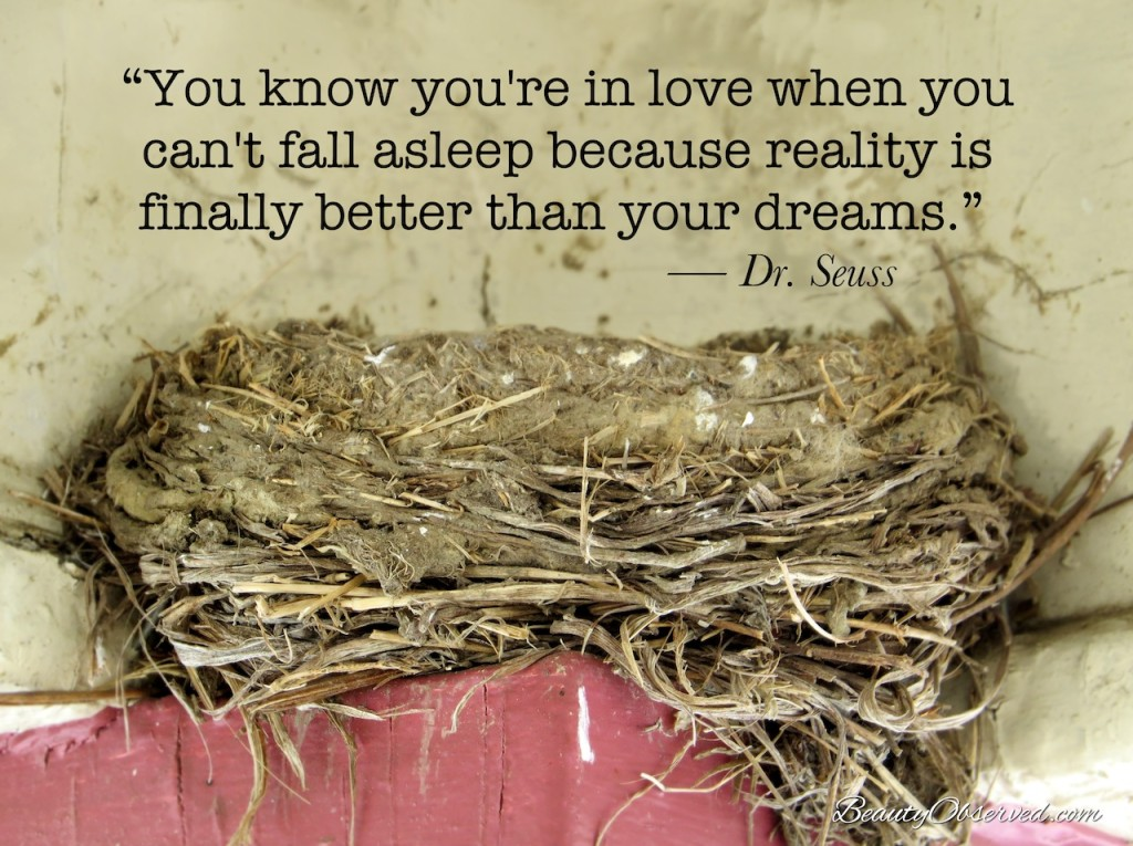 Dr. Seuss Quote You know you're in love...