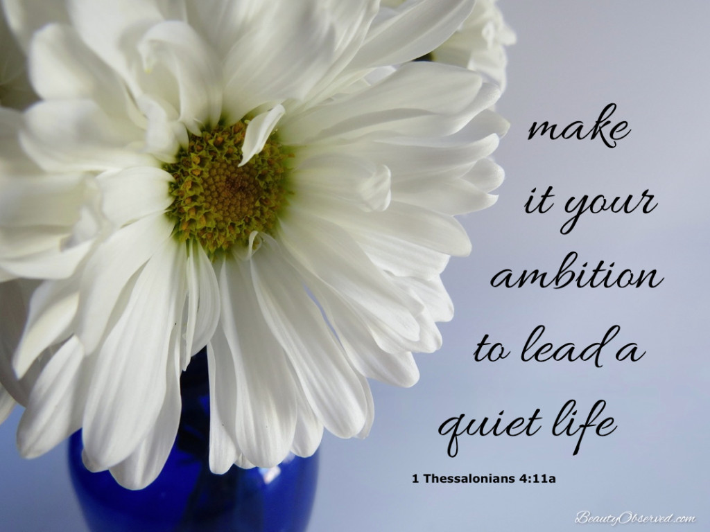 Make it your ambition to lead a quiet life.  I Thessalonians 4:11  Daisy