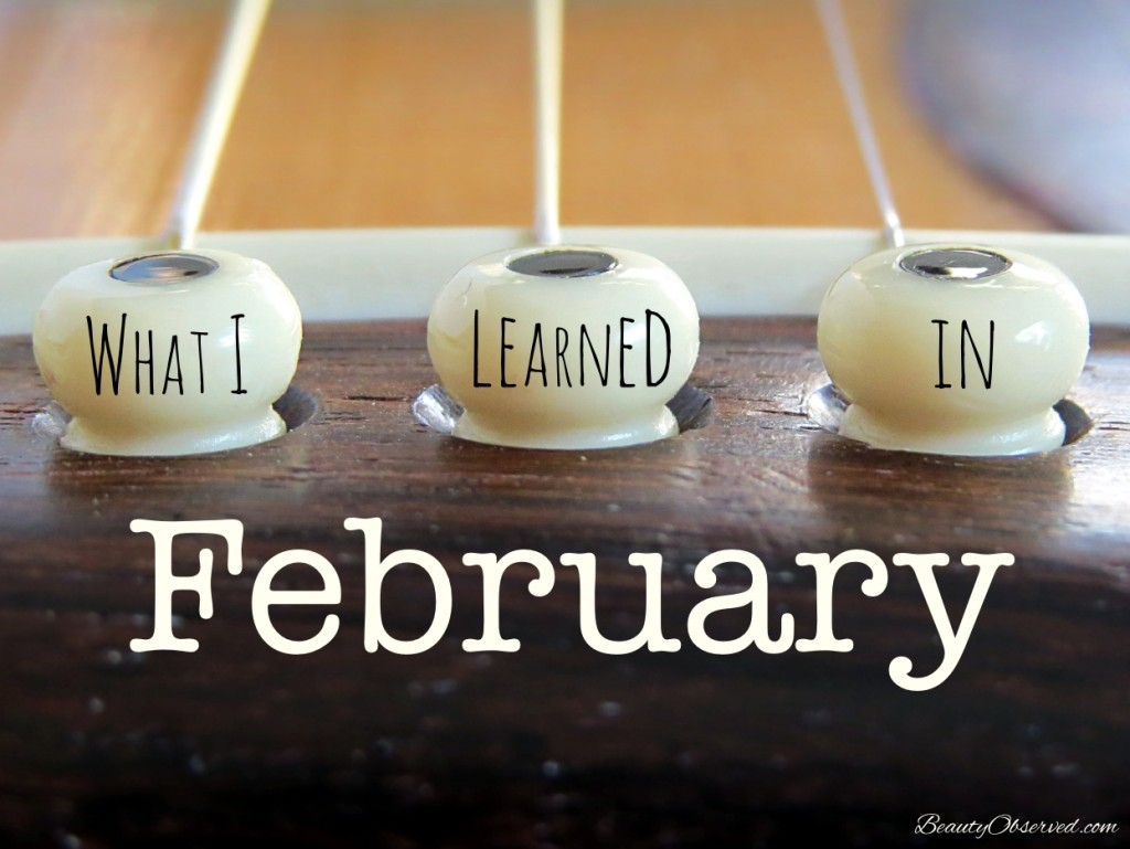 What I Learned In February Beauty Observed Guitar