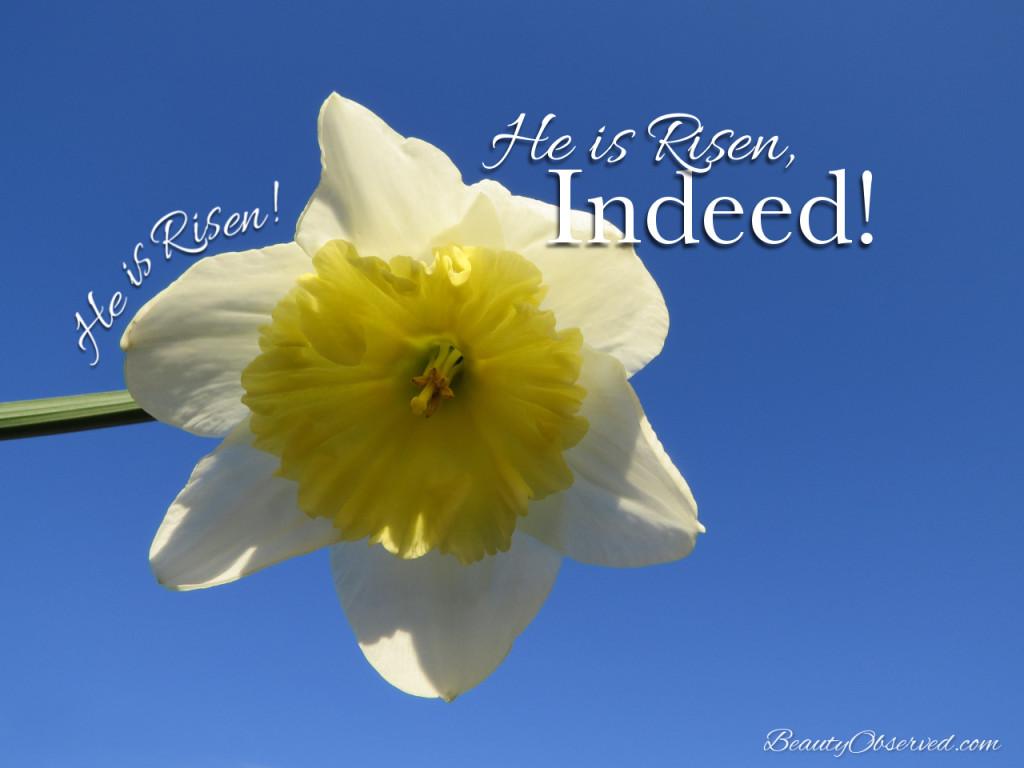 He is risen!  He is risen, indeed!