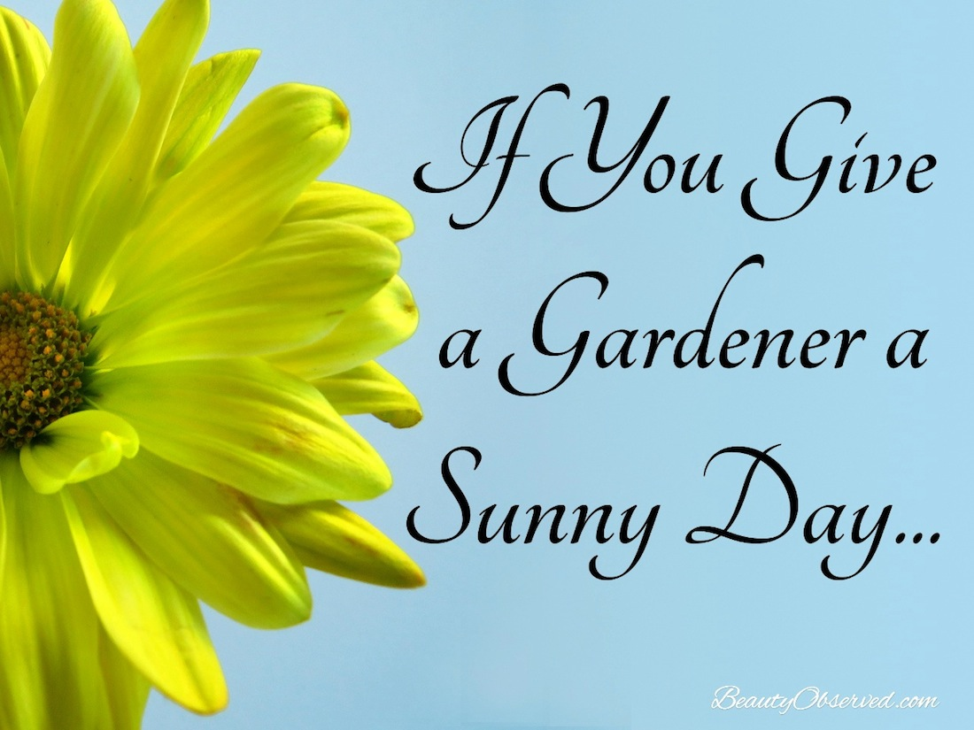 Sunny Spring Day Quotes