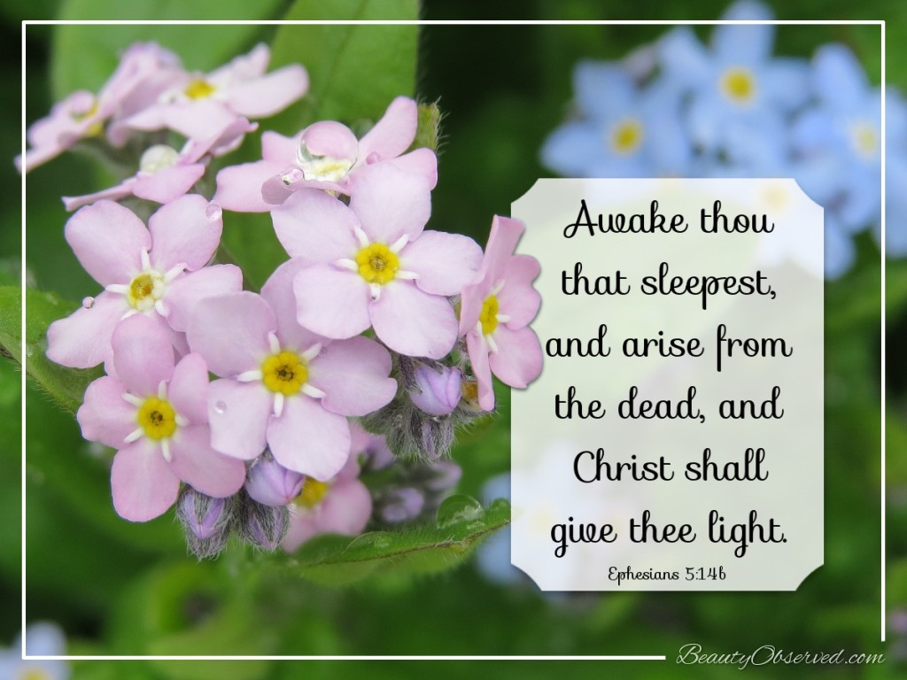 Awake thou that sleepest, and arise from the dead Ephesians 5:14b