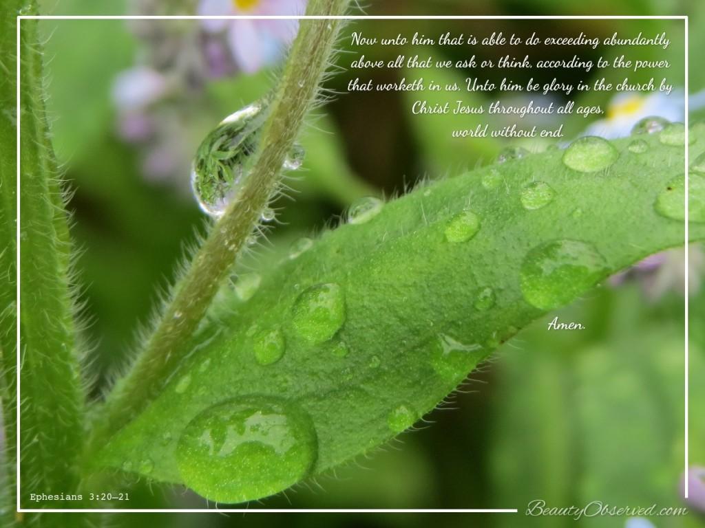 Raindrop-Ephesians-3-20-Beauty