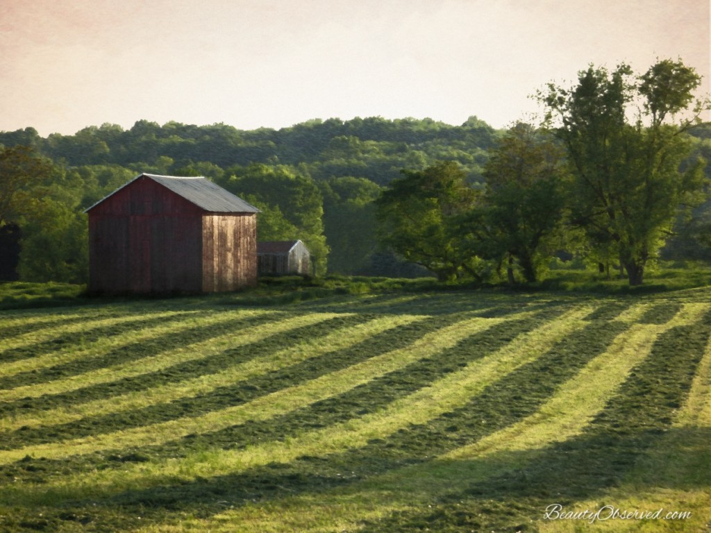 red-barn-field-Ohio