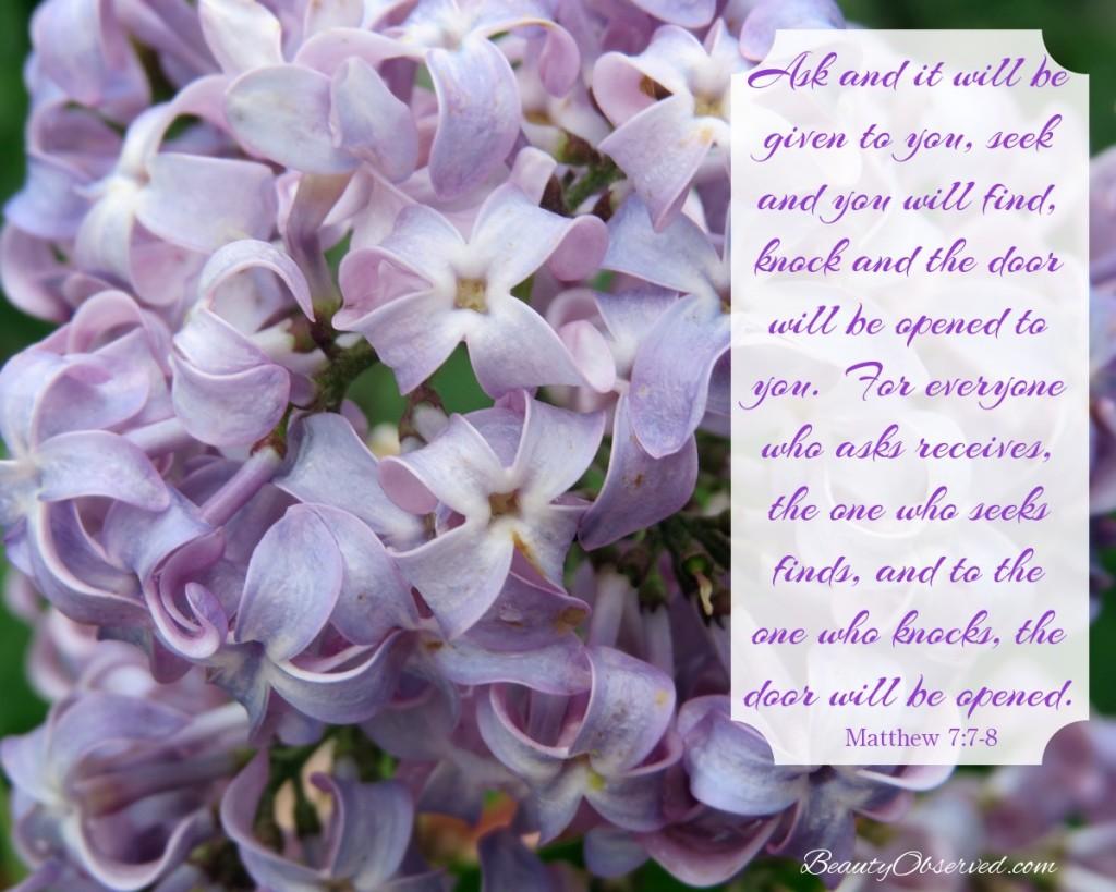 Lilacs with Ask, seek, knock verse.  Matthew 7 meme