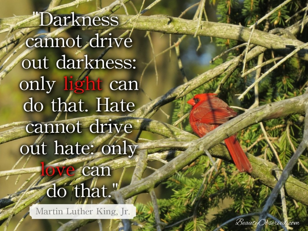 Darkness cannot drive out darkness:  only light can do that.  Martin Luter King Jr.
