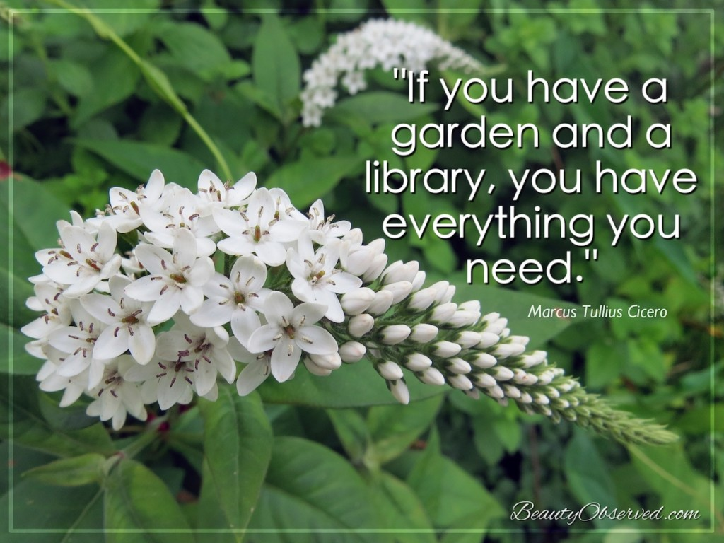 If you have a garden and a library, you have everything you need.  Marcus Cicero