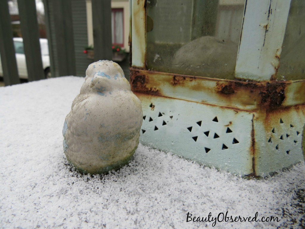 Turquoise-stone-bird-snow