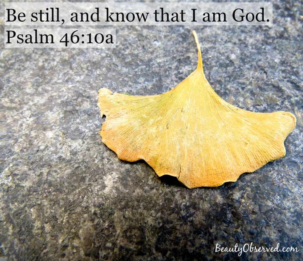 be-still-know-Psalm-46-10-yellow-ginkgo