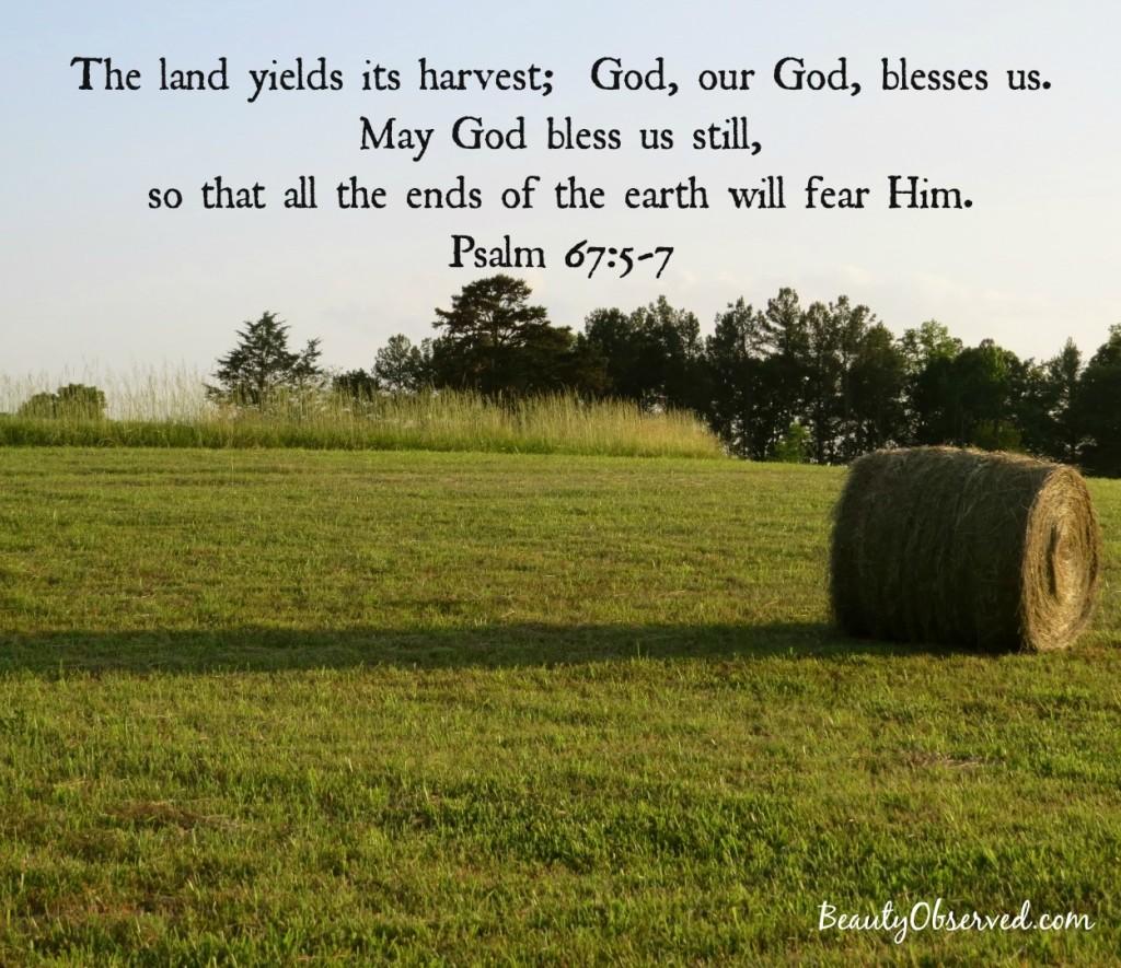 land-harvest-psalm-67-5-7