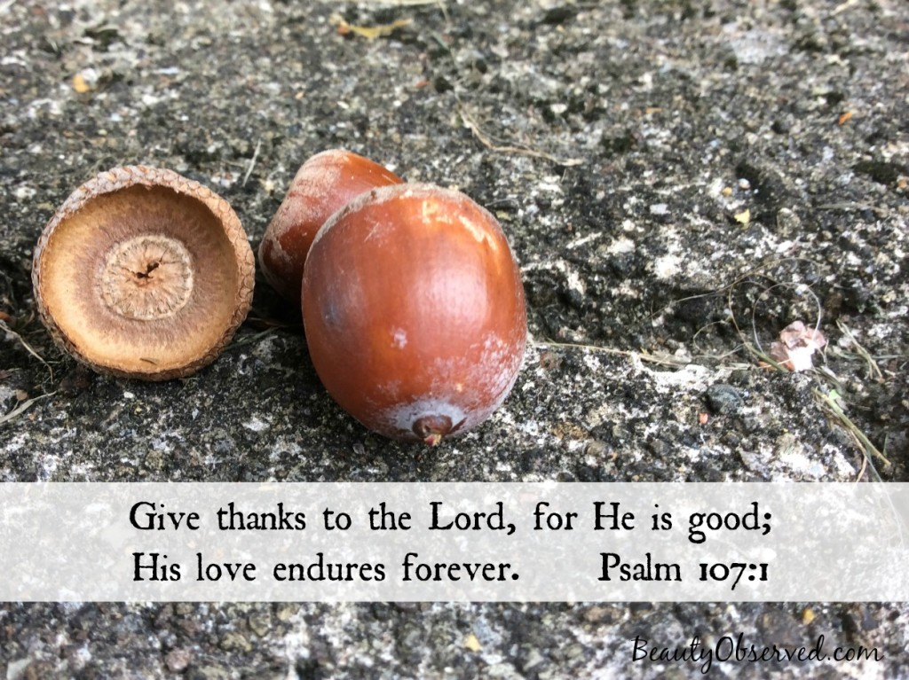 Give-thanks-Lord-Psalm-107-1
