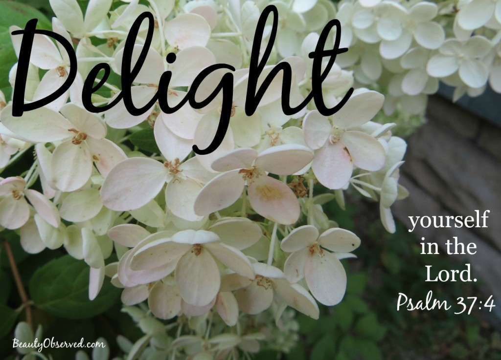 delight-Lord-Psalm-37-4