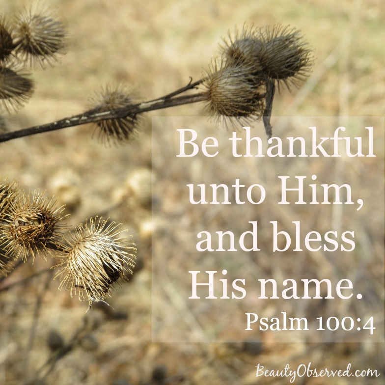 be-thankful-psalm-100-4-beauty-observed
